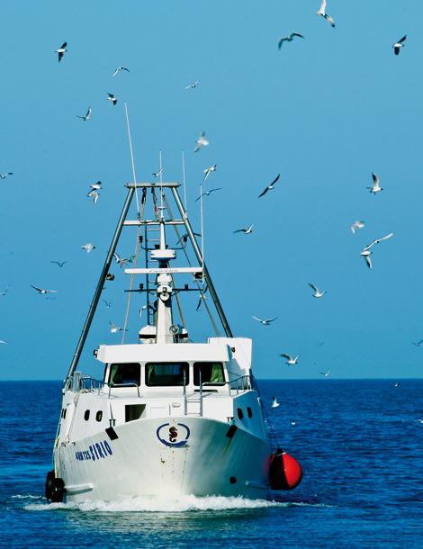 Visit Cesenatico mare pescaturismo