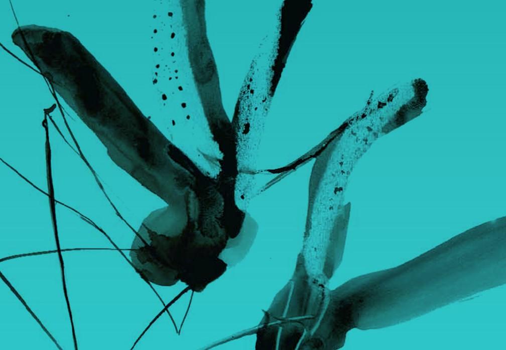 visit cesenatico - serenata zanzare